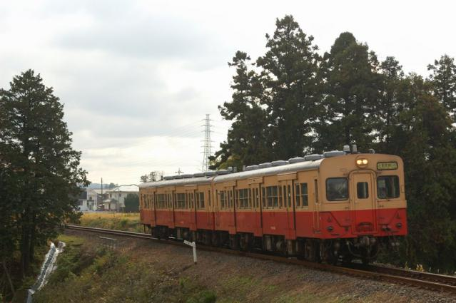 20121201_06.jpg