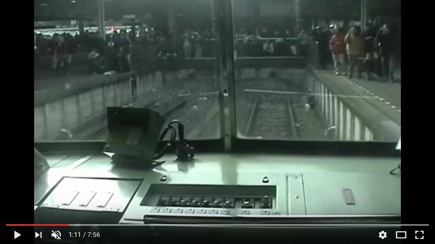 さよなら池袋線・新宿線101系